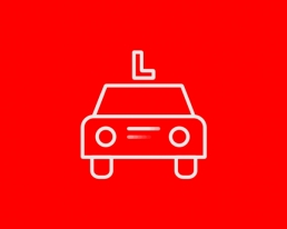 PICTOGRAM RIJBEWIJS - ILLUSTRATOR CARMEN NUTBEY - CORPORATE