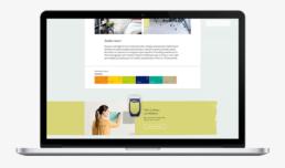 visual design website akzo nobel dulux flexa carmen nutbey nutbeydesign amsterdam visual designer