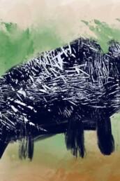 Fantasievolle en kleurrijke illustratie van wildzwijn - illustratie illustration dutch illustrator carmen nutbey amsterdam nederland netherlands