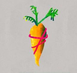Sinterklaas illustratie wortel