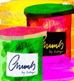 illustratie ingemaakt chunks - illustrator carmen nutbey - food editorial redactioneel - kookboek