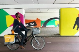 muralpainting mural muurschildering visual artist beeldend kunstenaar carmen nutbey amsterdam illustrator tunnel reigersbos
