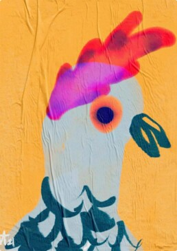 illustratie illustration bird poultry fantasy illustrator carmen nutbey