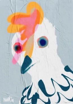 illustration bird poultry fantasy illustrator carmen nutbey
